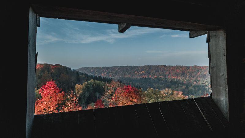 пейзаж осень природа краски Окно в осеньphoto preview