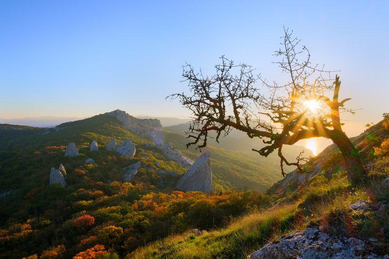 Крым, Скалы, Тышлар Скалы Тышларphoto preview