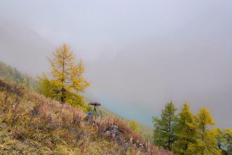 алтай,осень в ожидании появления волшебного светаphoto preview