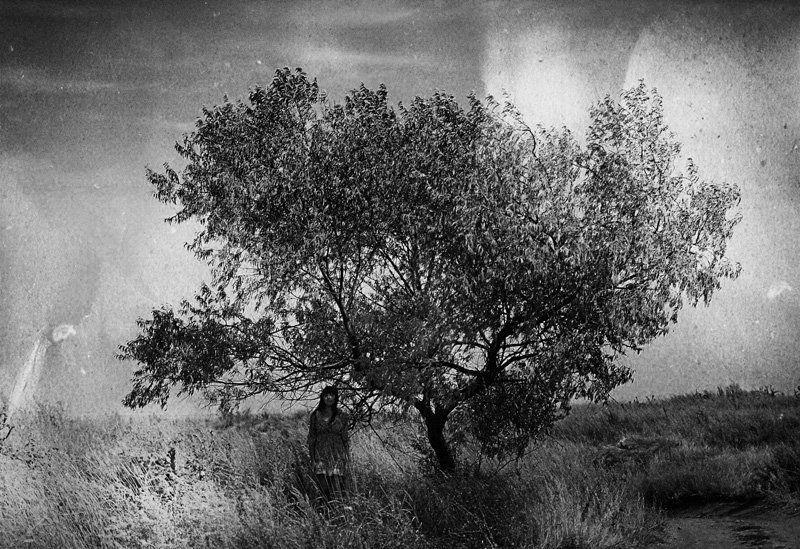 пленка, дерево, девушка, одиночество, тайна Тайнаphoto preview