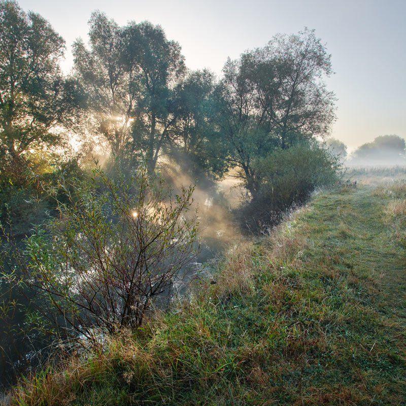 туман, река, утро, осень ***photo preview