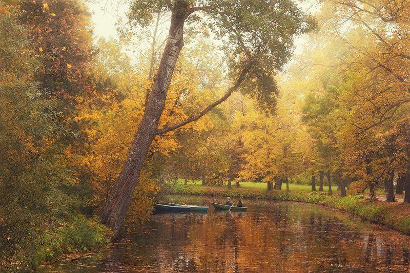 природа, пейзаж, парк, лодка, пара, свидание, осень, золотая, пруд, вода, отражение, dyadyavasya Лучшее время для свиданийphoto preview