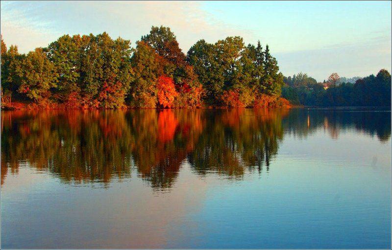 autumn,morning, Осенью цветут кленыphoto preview