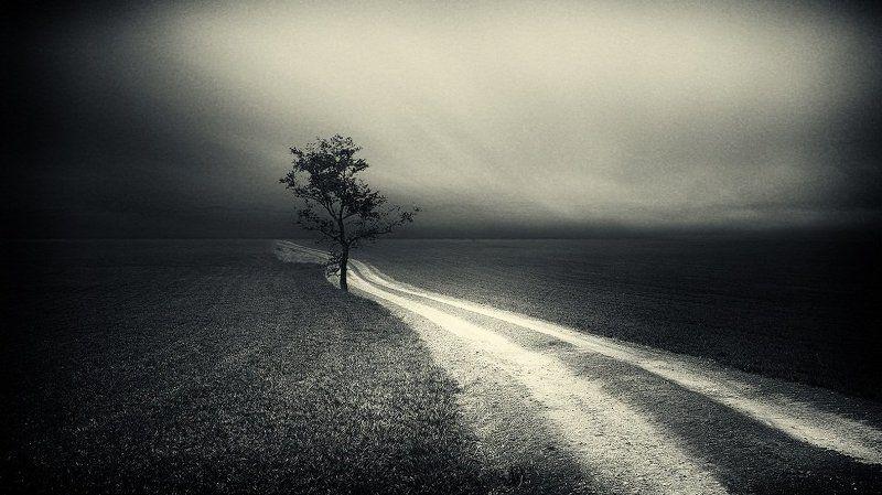 Серия одиночества...photo preview