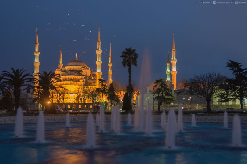 Мечеть Султан Ахмед, Стамбул, Турция, мечеть, Султан Ахмед, синий, чайка, небо, сумерки, свет, электрический, Uber Alles photo preview