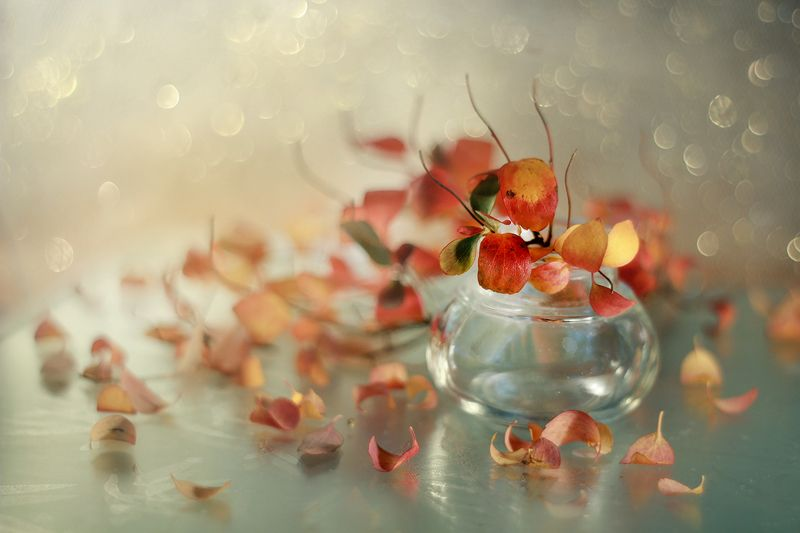 autumn,jesień,martwa natura, still live Autumn ...photo preview