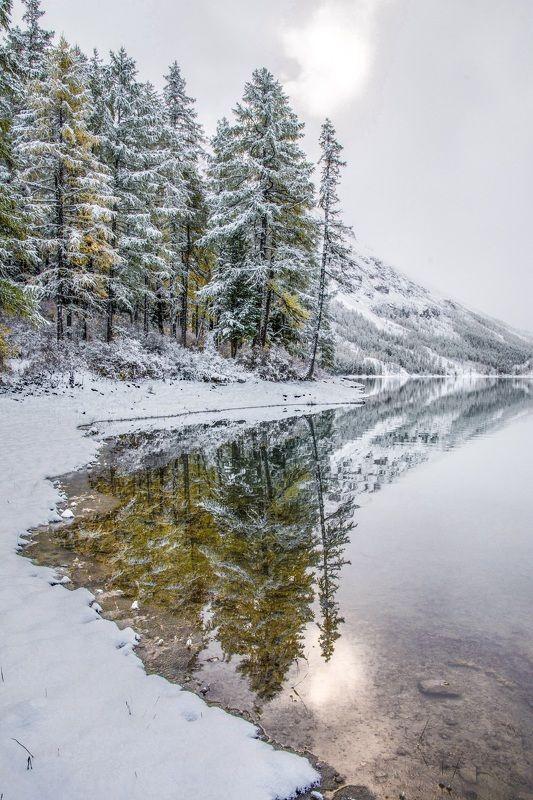 алтай,осень заснеженным утром в зеркале водыphoto preview