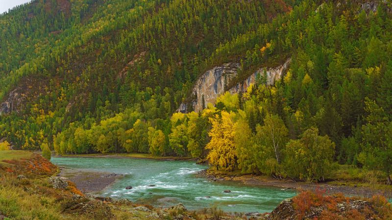 пейзаж, осень, река, Горный Алтай  Краски Горного Алтая photo preview