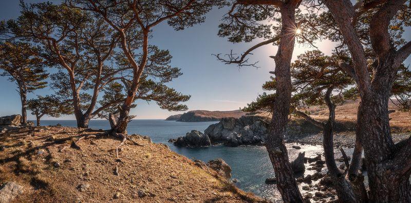 панорама, осень, море, скалы, деревья ***photo preview
