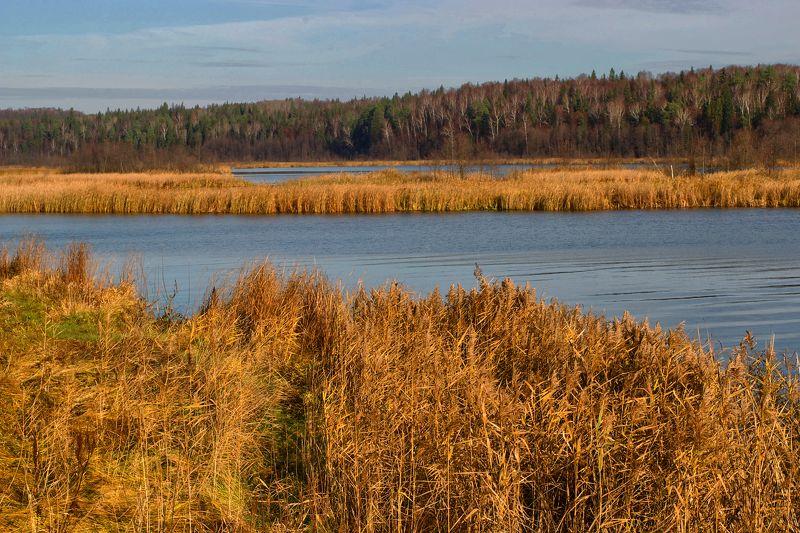 Озеро осеньюphoto preview