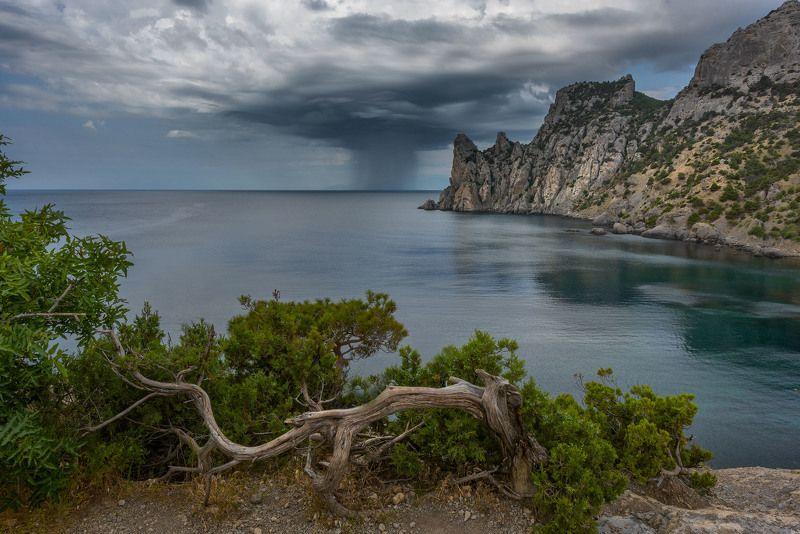 Фототуры  с Владимиром Рябковым. Грозный дождь.photo preview
