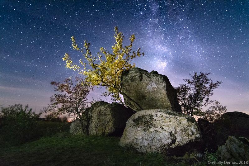 ночь, ночной пейзаж, ночная съёмка, длинная выдержка, звезды, звездное небо, млечный путь, композиция, камни Дерево-атлант. Актовский каньон.photo preview
