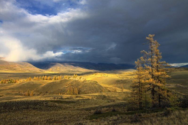 сибирь, алтай, горный алтай, курай, курайский хребет, осень, горы Осеннее небо, вечернее солнце...photo preview