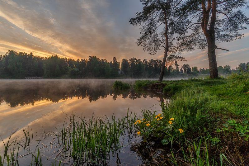 рассвет пейзаж утро туман река Нежное послевкусие огненного рассвета.photo preview