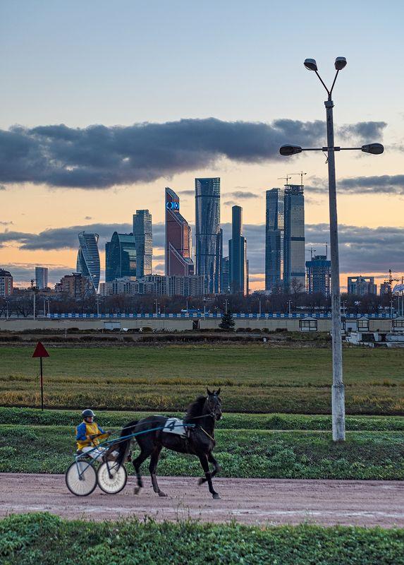 moscow city, moscow, hippodrome, horse racing, скачки, ипподром, москва сити, москва [hippo(moscow city)drone]photo preview