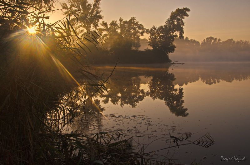 осень, октябрь, утро, туман, лучи Обласканные утренним лучомphoto preview