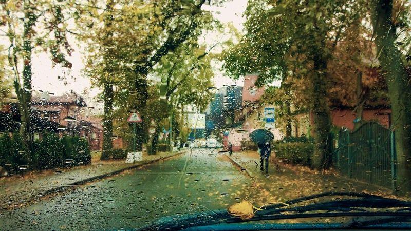Осень дождями ляжет...photo preview