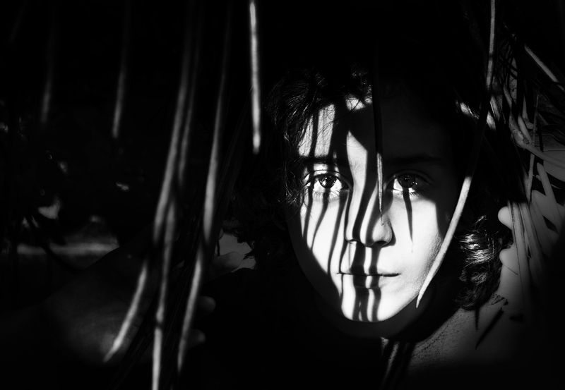 shadows, , boy, b&w In the Shadowsphoto preview