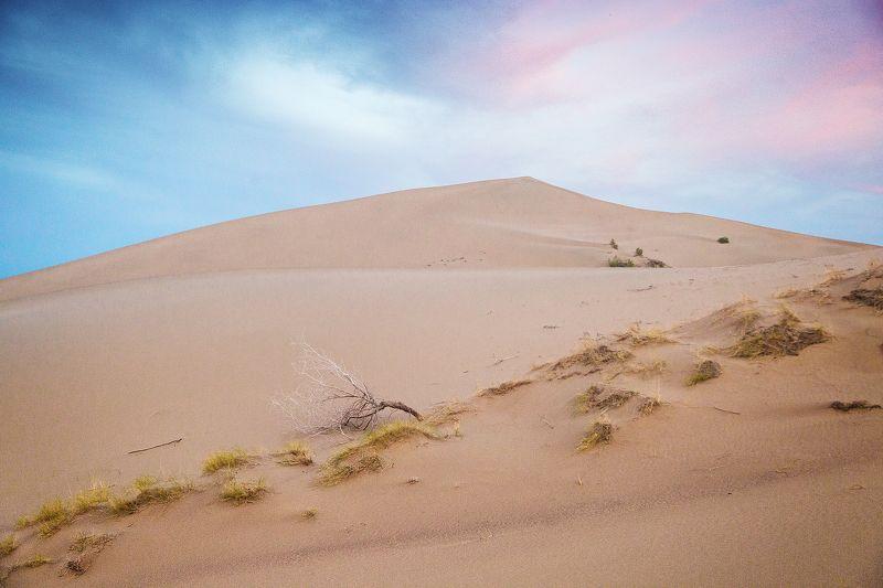 Canon Закатный барханphoto preview