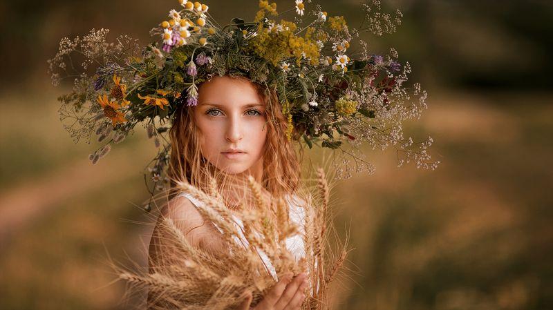 портрет девушки, поле, жанровый портрет photo preview