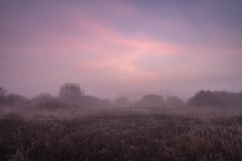 Туман и рассветphoto preview