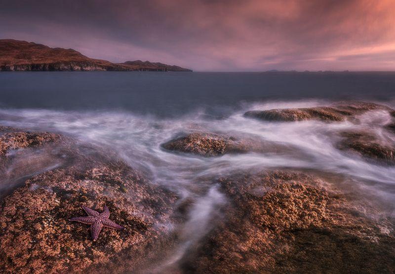 море, скалы, звезда ***photo preview