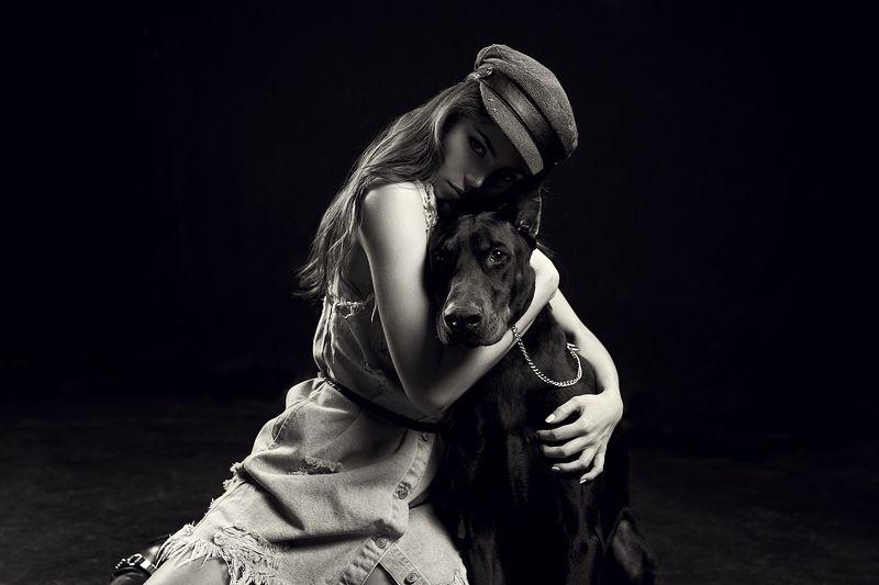portrait, 35mm, girl, beauty, retouch, posing, model, studio, photography, fitness, lingerie, sexy, sigma, sony, a7iii, a7m3, art, light, hair, bazarov, glamour, fashionable, elegant, fashion, style, pretty, doberman, awesome, dog Doberman projectphoto preview