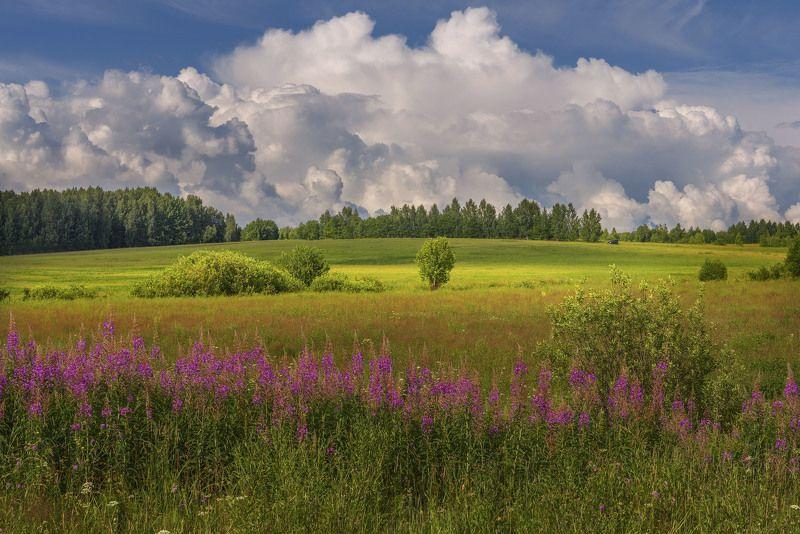Фототуры с Владимиром Рябковым, Нижежегородская область, лето, природа. Летний день.photo preview