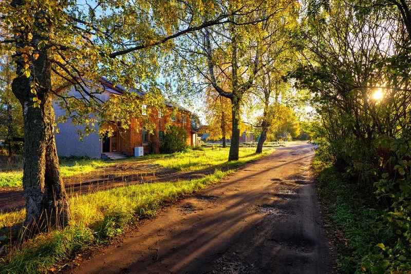 утро,осень,октябрь,краски,свет,тени,дорога,дом,деревья,пейзаж Рисует утро красками октябрьphoto preview