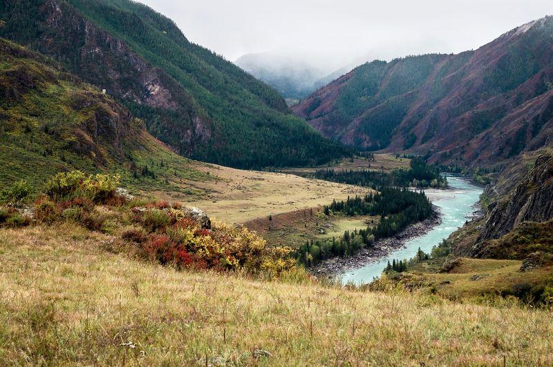 природа  алтай   горы пейзаж путешествие осень  инегень река катунь В окрестностях Инегеня...photo preview
