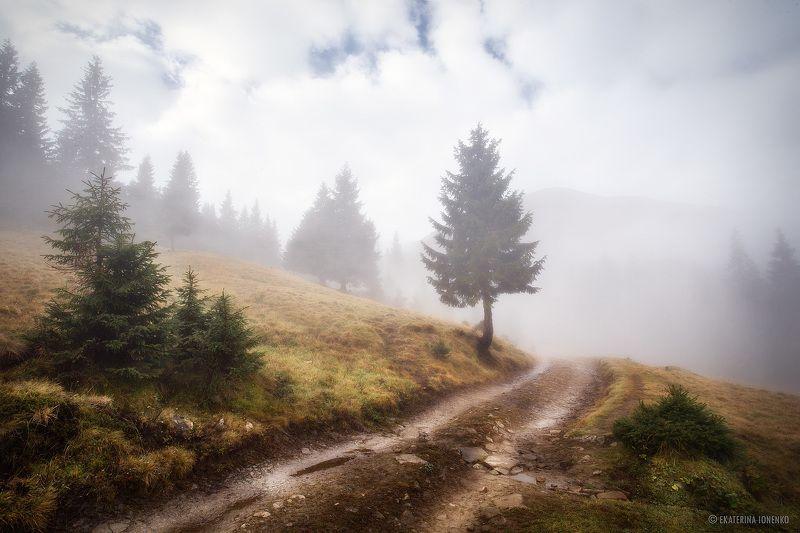 Петрос в туманеphoto preview