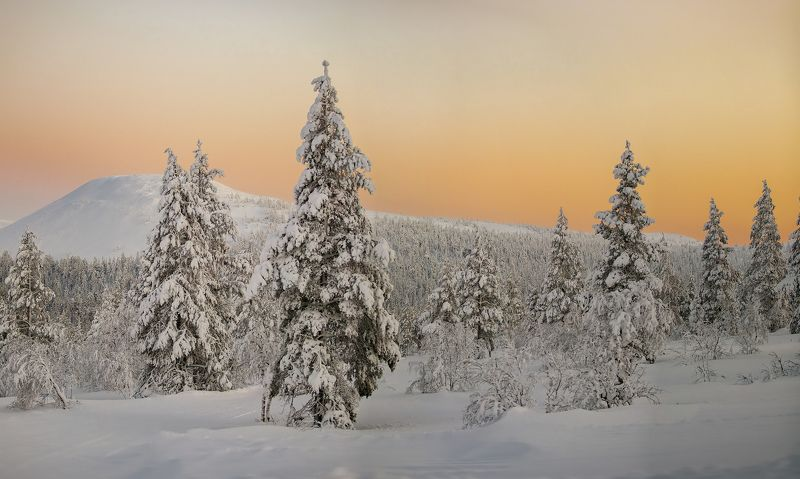 север, заполярье, снег, горы, финляндия, зима ***photo preview