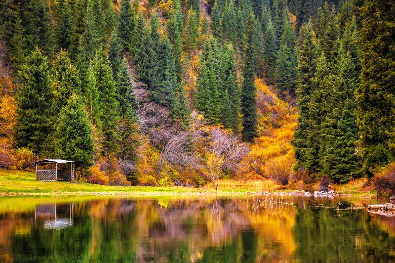 пейзаж,  природа, горы, облака, солнце, закат, лучи солнца, казахстан, величие, поле,  фотограф, алматы, фотограф алматы, landscape, the sun, nature, the mountains, awesome, amazing, kazakhstan, almaty, photographer,  sunset, beauty,  Осеньphoto preview