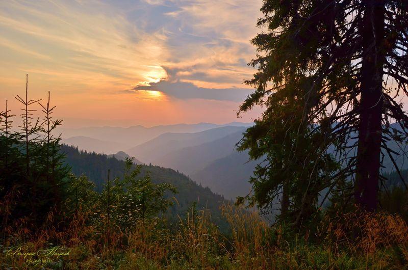 карпаты, горы, мармаросский массив, вечер, закат Про закат в Мармаросахphoto preview