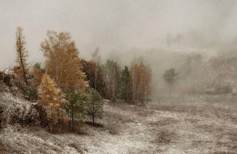 торгашинский хребет. склон. туман. На склоне непогоды.photo preview