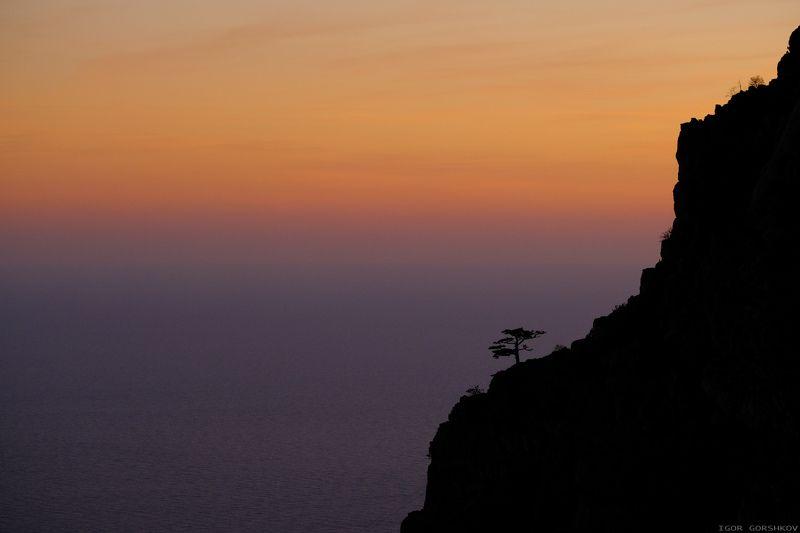 крым, горы,закат,вечер,пейзаж,скалы,дымка,дерево,море,бесконечность Созерцающий бесконечное мореphoto preview