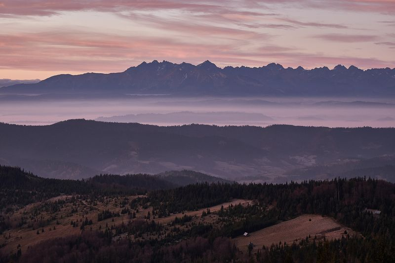 morning,sunrise,sunset,fog,haze,tatras,trees T1photo preview