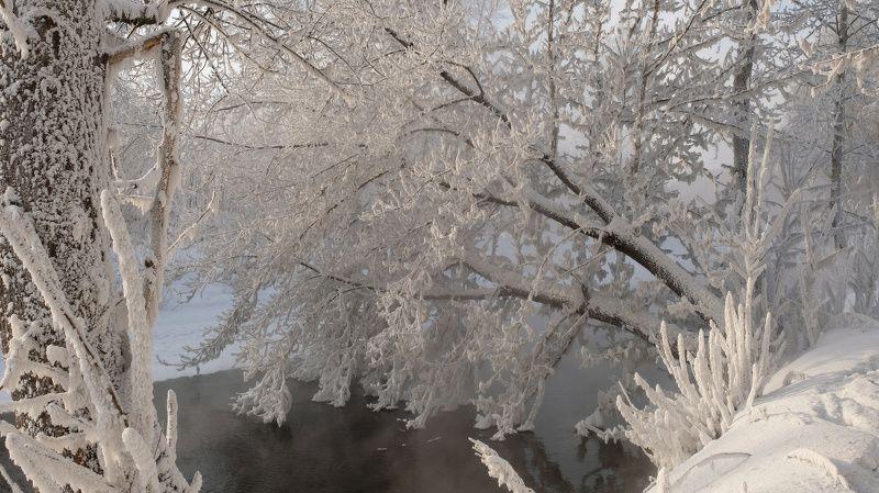 Морозное кружевоphoto preview