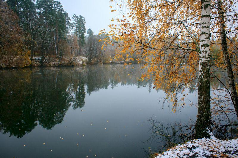 пейзаж, осень, озеро, береза, отражение Холодный ноябрьphoto preview
