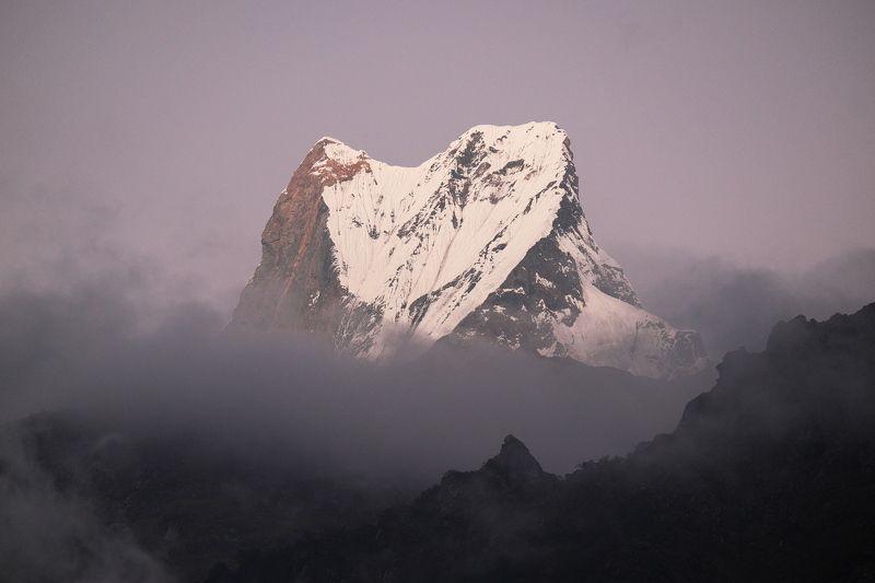 горы, альпинизм, восхождение, гималаи, непал, аннапурна, mountains, alpinism, mountaineering, nepal, himalayas, annapurna Мачапучареphoto preview