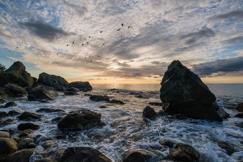 крым,море,утро,камни,скалы,берег,облака,рассвет,пейзаж,волны,пена,вода,птицы,стая Утреннее мореphoto preview