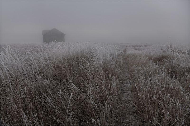 туман *photo preview