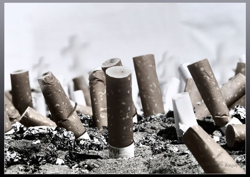 здоровье, сигареты, пепельница кладбище Кладбище здоровьяphoto preview