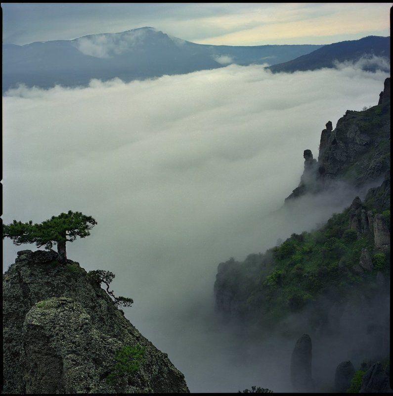 обитаемые облакаphoto preview