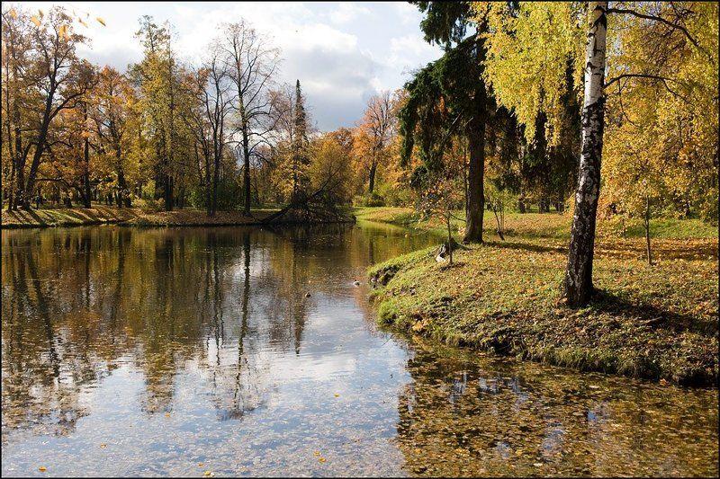 александровский, парк., октябрь. ***photo preview