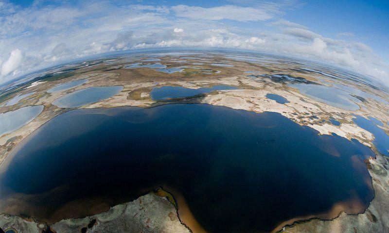 аэросъемки,север, лето,ямал, тундра летние краски тундрыphoto preview