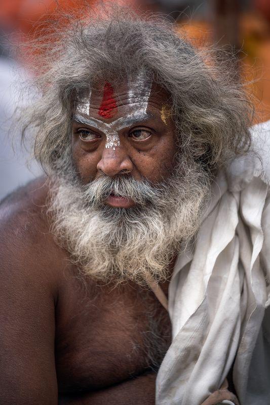 ascetic, baba, beard, beggar, begging, begging bowl, body paint, contemplation, face paint, face painting, god, hindu, hinduism, holy, holy man, india, karma, mala, meditation, moksha, monk, ochre, ochre robe, orange, paint, rishikesh, sadhu, sannyasi, sw Divine Intoxicationphoto preview