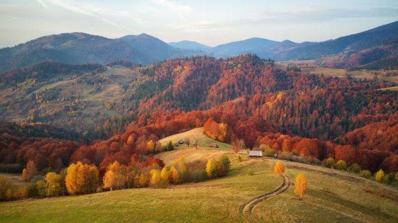 вечер, горы, закарпатье, закат, карпаты, октябрь, осень, украина Октябрьская пасторальphoto preview