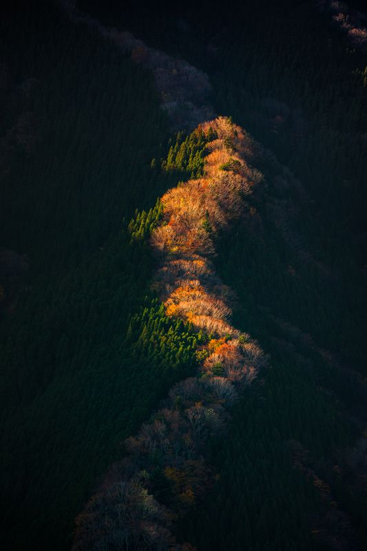 landscape nature morning light nara japan mountain autumn  [ Miracle Valley Namego ]photo preview