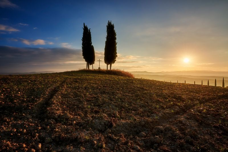 italy, landscape, field, tuscany Crossphoto preview